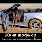 415403_544_381