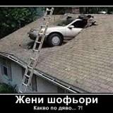 415406_544_426
