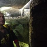 Аз в аквариума в Лондон