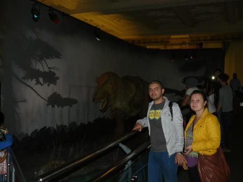 Тиранозавър в националния исторически музей