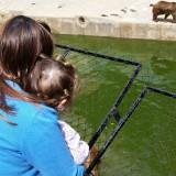 Мама и Ани гледат мечо