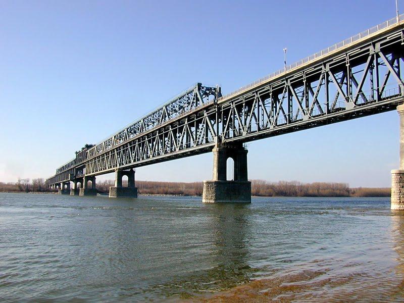 Корупция на дунав мост